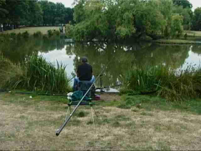 Fishing in tiny ponds sorry dad england is weird for Small pond fishing